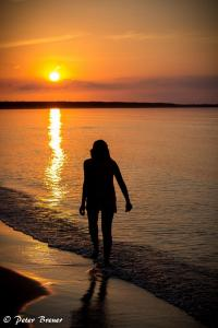 Sunset Silhouette by the Shore